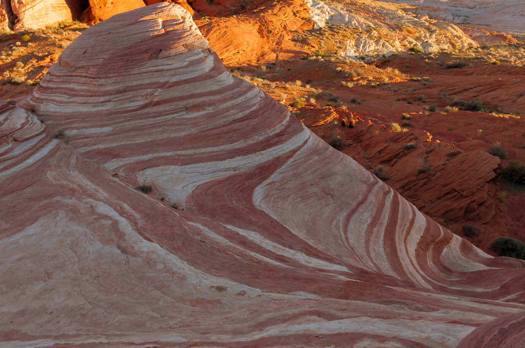 The Wave - Valley of Fire