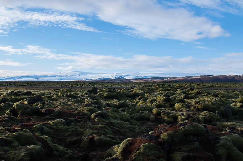 Lavafeld auf Island